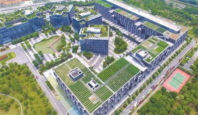 鹤岗市新华农场图片