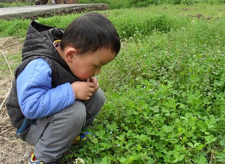 """厚桥幼儿园:""""找春天""""活动告诉孩子春天在哪里"""